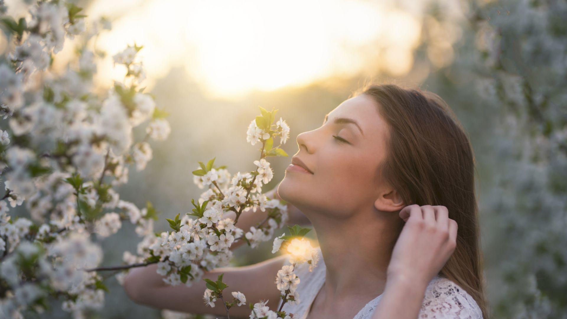 За кого се сещаш, когато помиришеш книга: 7 начина, по които ароматите въздействат на съзнанието
