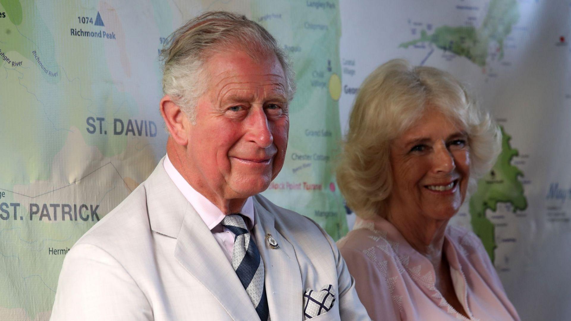 Принц Чарлз подчерта нуждата от ваксиниране на фона на битуващото недоверие