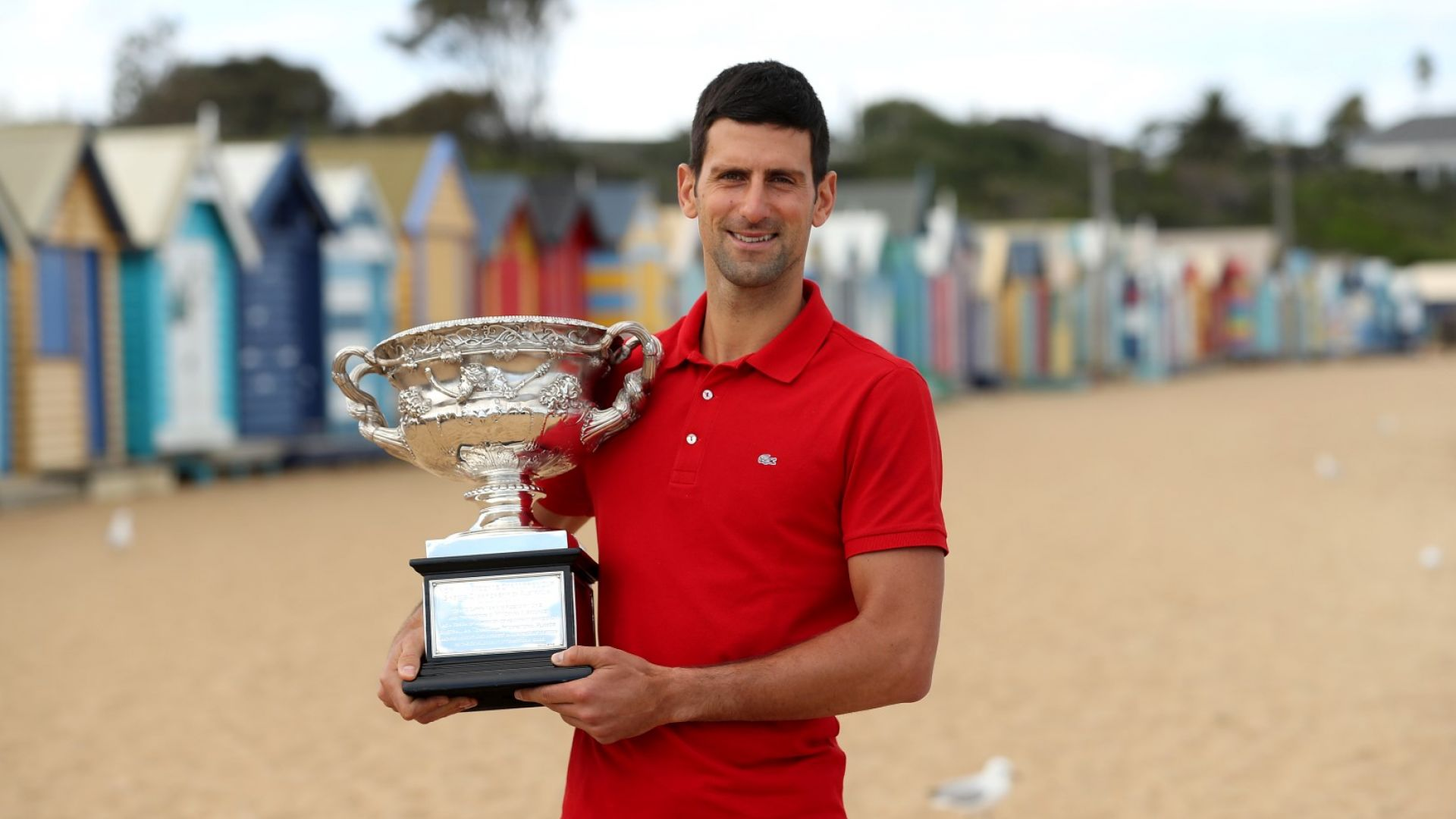 Официално: Джокович е спечелил Australian open с доста сериозна контузия