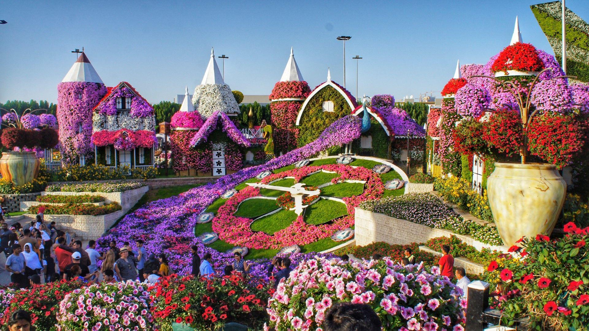 Градината на чудесата