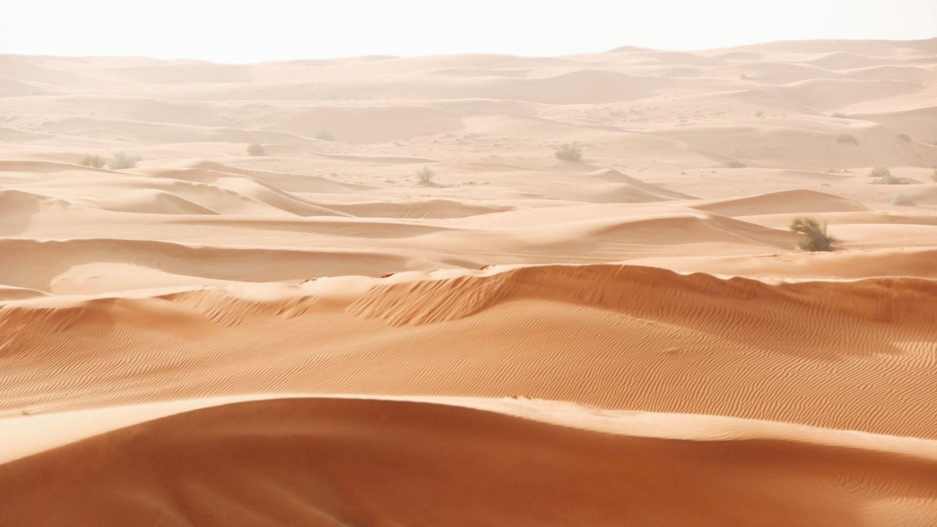 Арабската пустиня в Дубай
