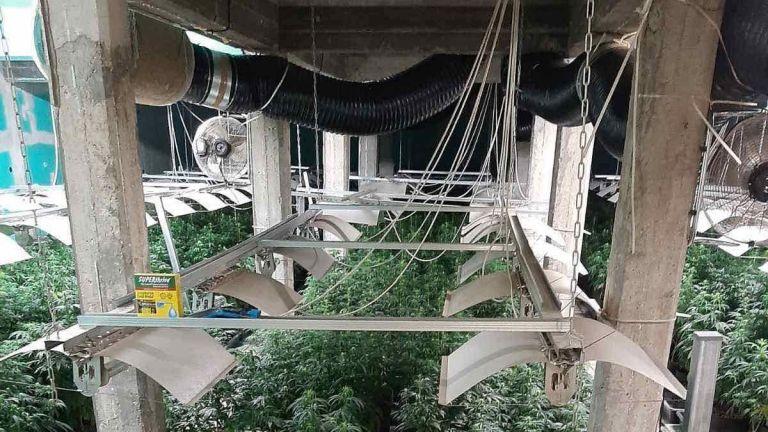 Модерна лаборатория за марихуана е разкрита в луковитското село Румянцево,