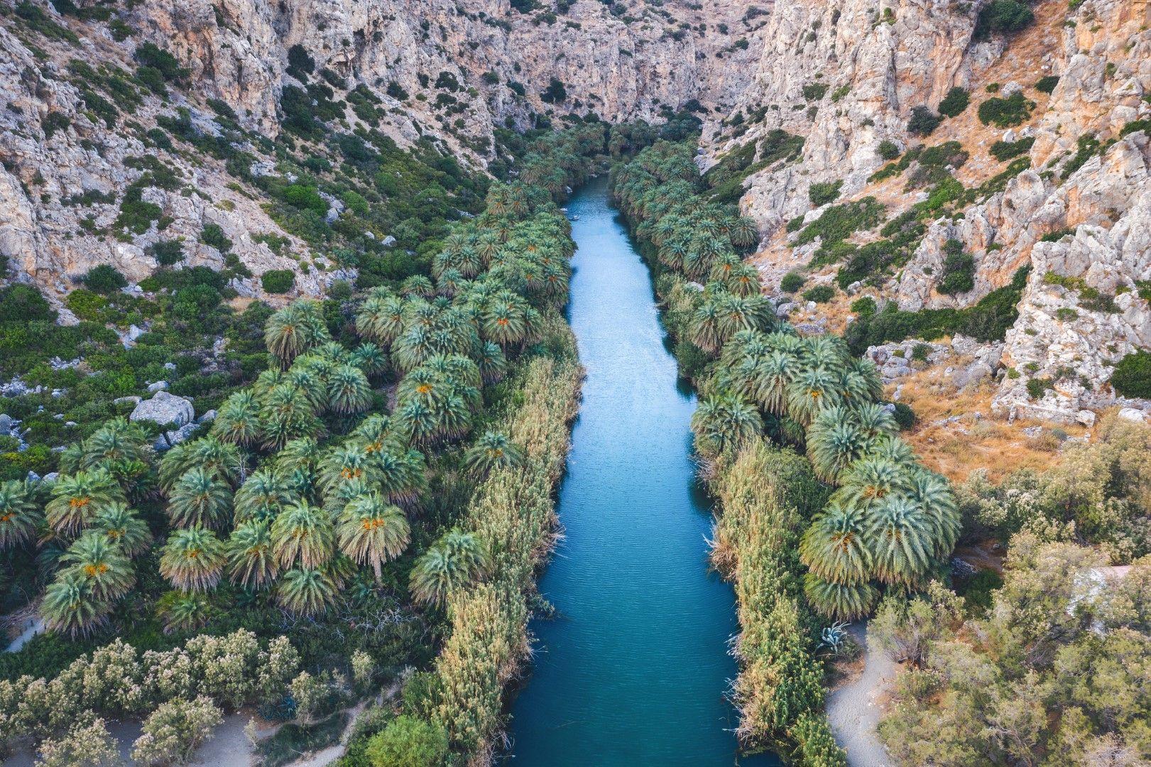 Река Мегас Потамос се влива в морето сред горичка от рядък вид палма, Крит