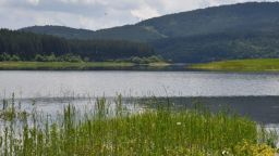 Експерт: Глобите за ВЕЦ трябва да се увеличат драстично, реките пресъхват