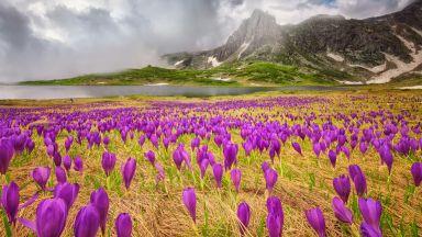 10 красиви места през пролетта в България (където няма тълпи)