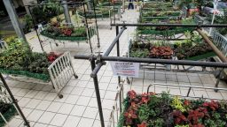 Арт инсталация от цветя, направена от болнични легла