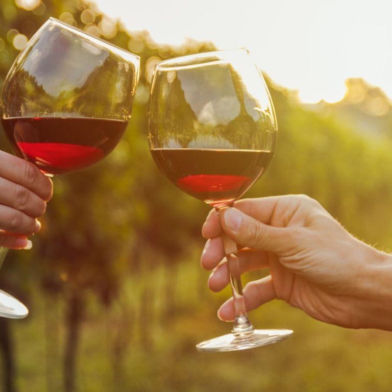 Работа мечта? Тази винарна ще ви плати 10 000$ месечно да живеете край лозята