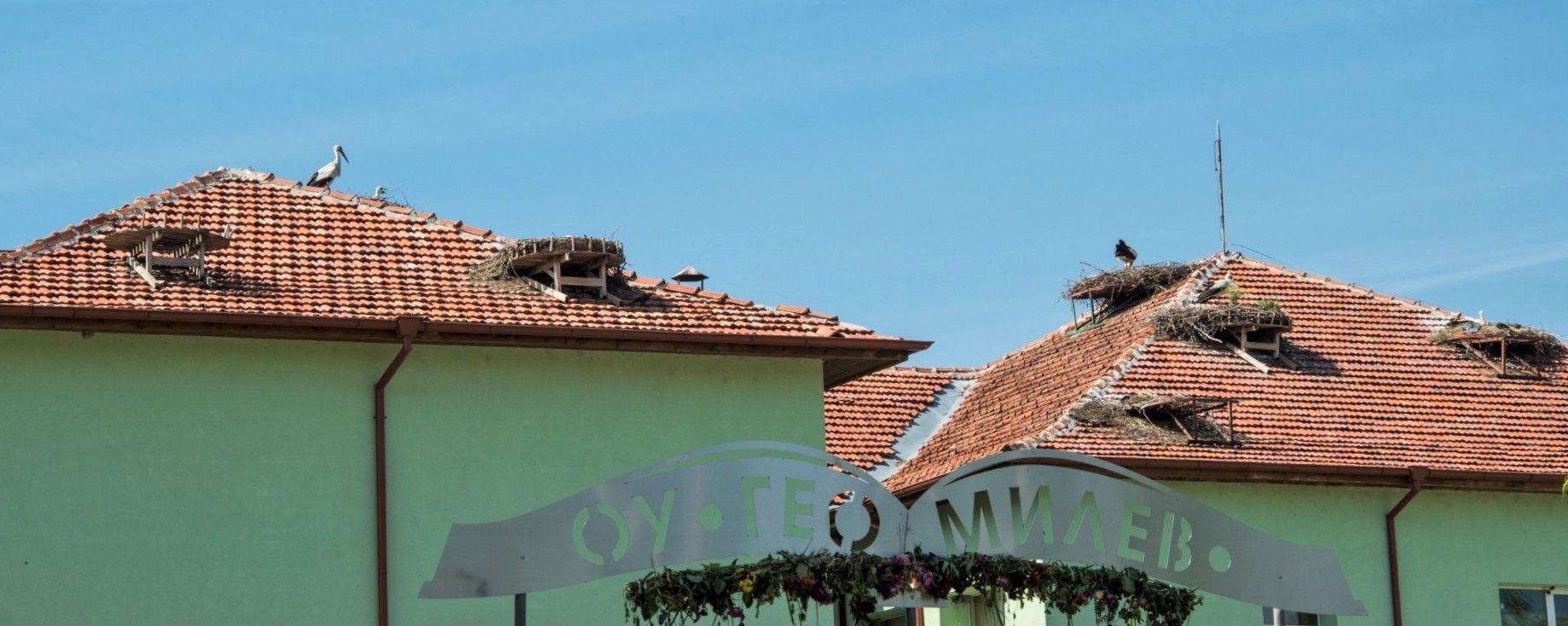 22 щъркелови гнезда има на покрива на училището в Белозем