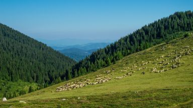 50 неща, които да направите в Родопите