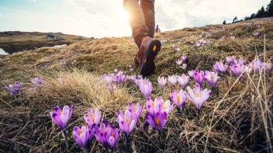 Списъкът на пътешественика: какво да видите и правите през април