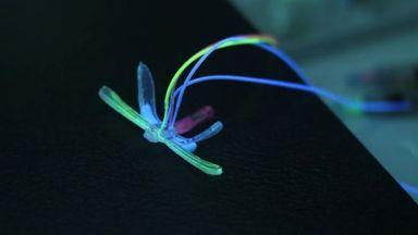 Роботизирано водно конче може да следи състоянието на водоеми (видео)