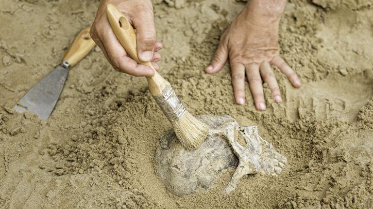 Генетичното секвениране на човешки останки отпреди 45 000 години, открити