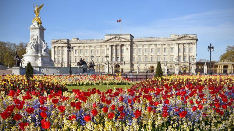 Градините на Бъкингамския дворец отварят за пикник и разходки (видео)