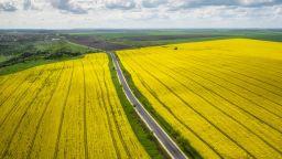 5 красиви шосета в България, по които да шофирате тази пролет