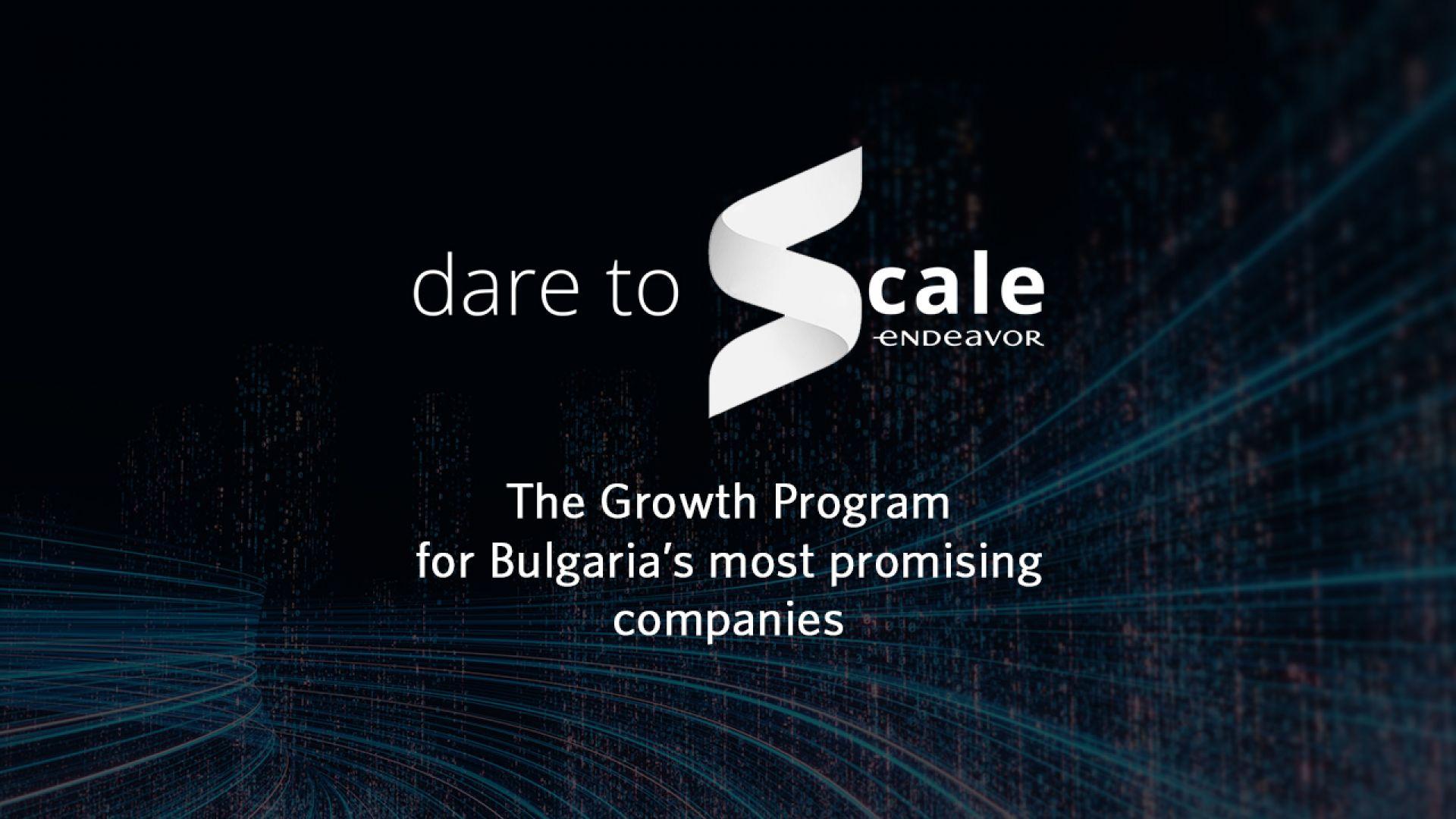 Отваря приемът за програмата на Endeavor – Dare to Scale 2021