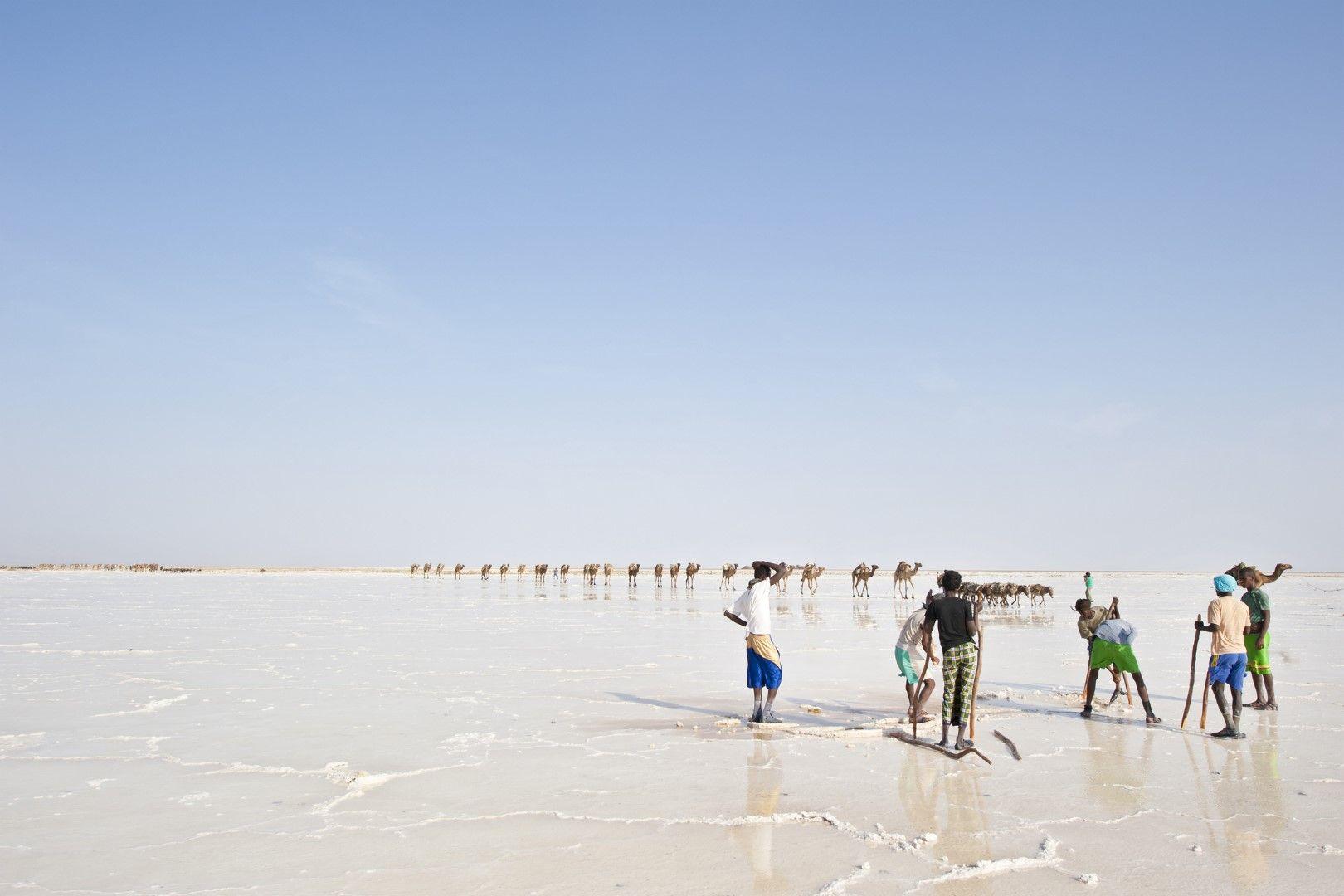 Солни работници и керван в далечината.