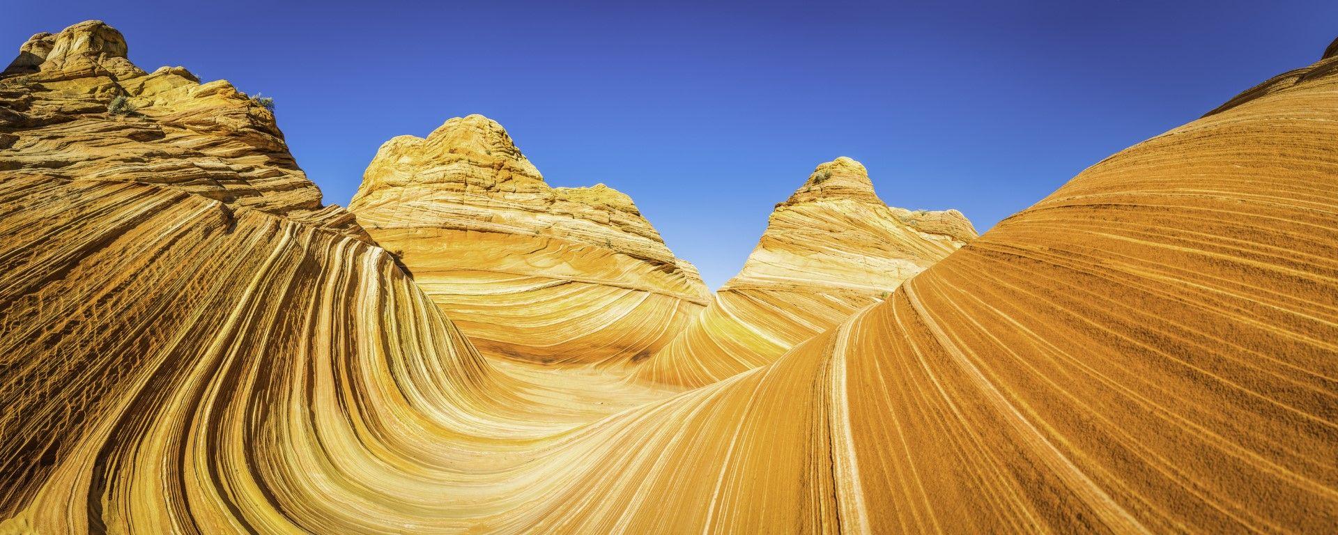 Вълната в Аризона, САЩ