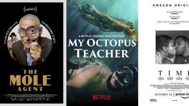 """Документалният филм """"My Octopus Teacher"""", изследваща връзката между човек и октопод, ще се бори за """"Оскар"""""""