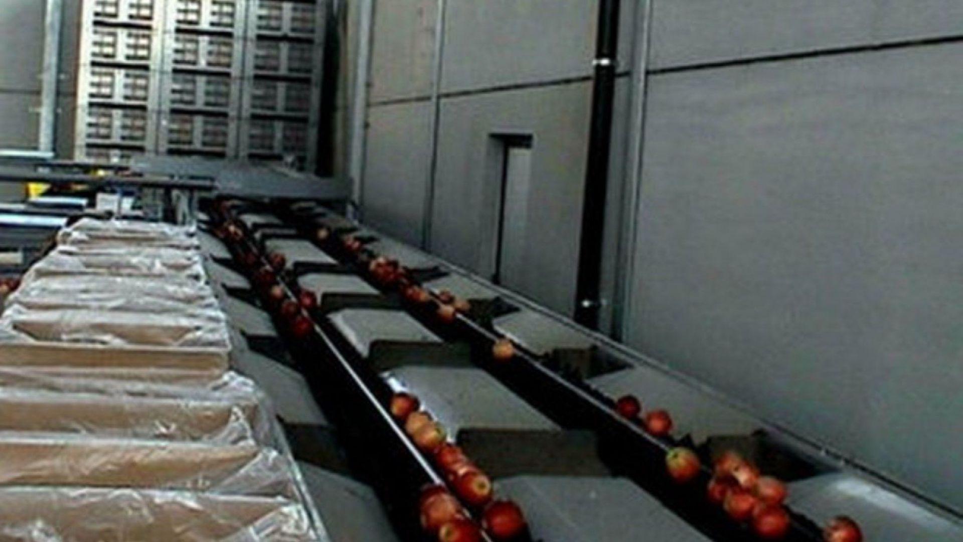 Наливат 422 млн. лева в земеделието: До почти 3 млн. за стопанство