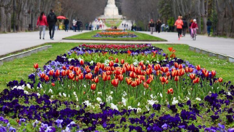 Броени дни преди големия християнски празник Цветница Морската градина на