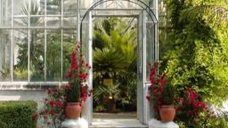 Ботаническата градина с вход свободен за Цветница