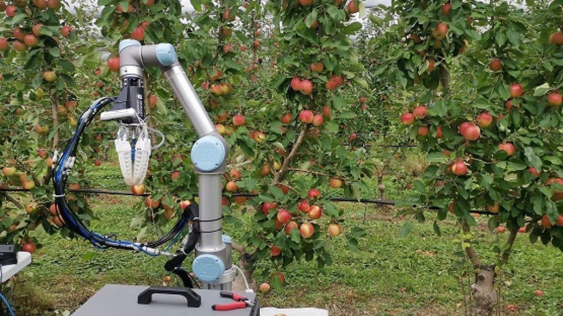 Facebook подпомага разработката на роботи-слуги