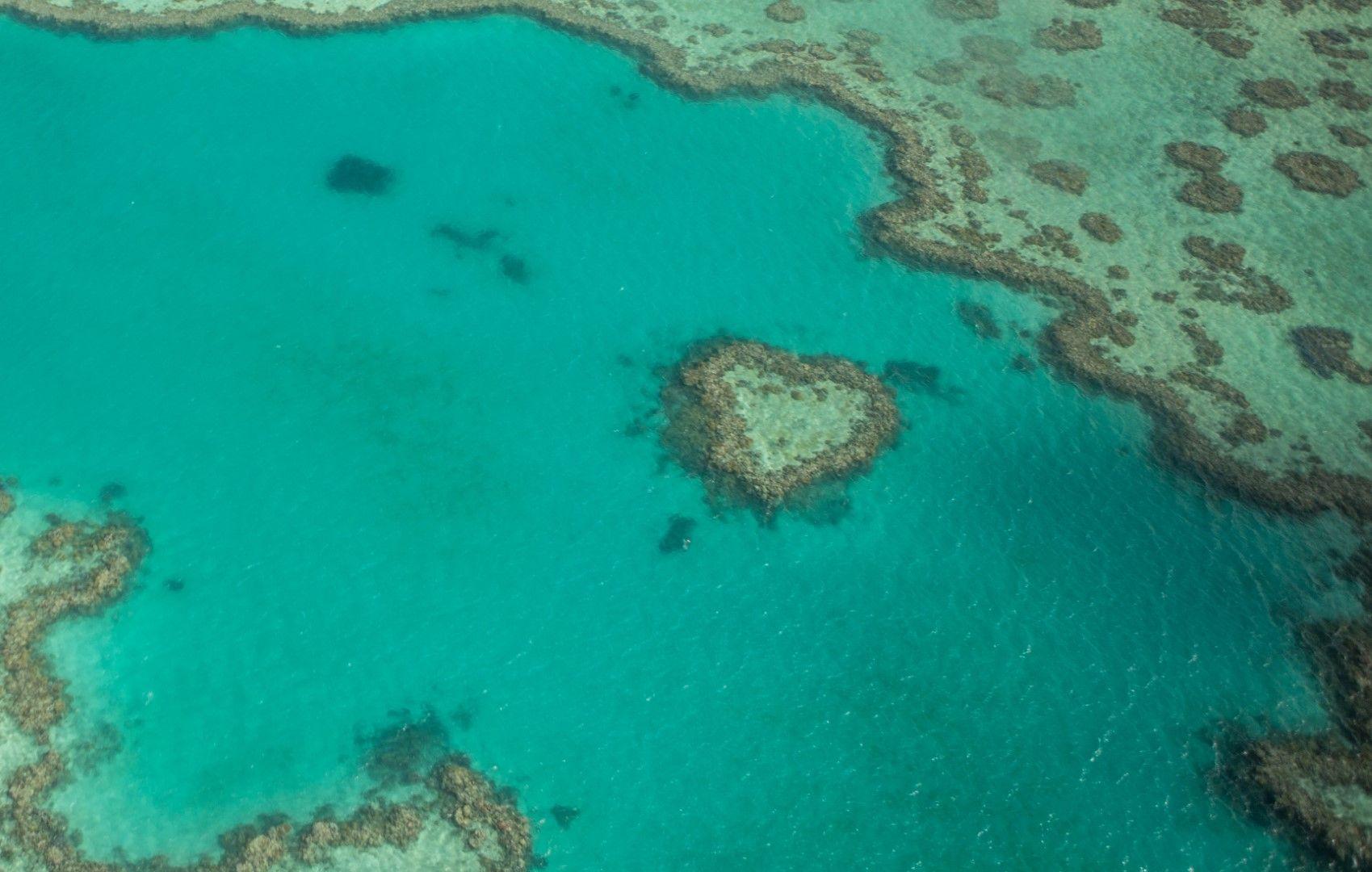 Сърцевидният риф на островите Уитсъндис, Австралия