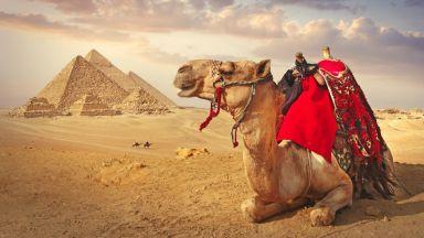 ЕС финансира селския туризъм в Египет