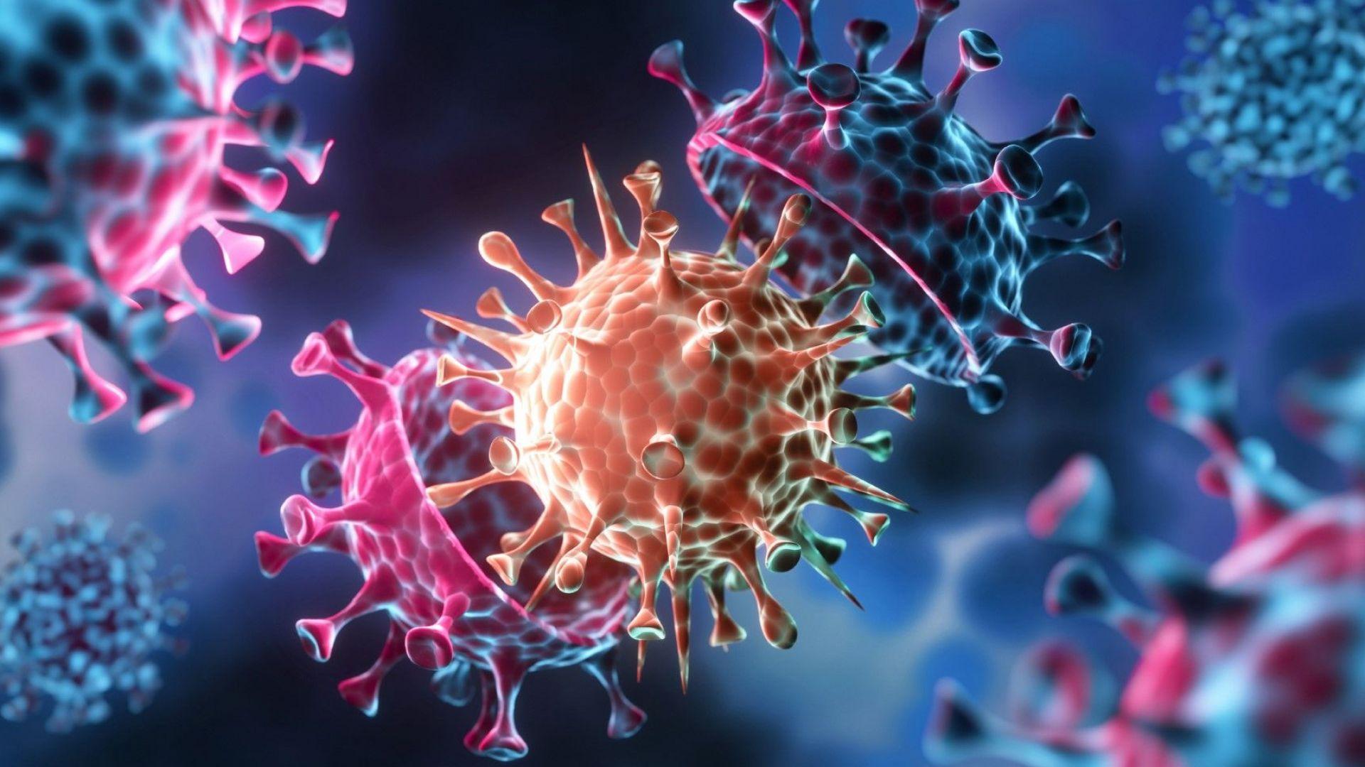 Какво влияние имат новите щамове на Covid-19 върху ефикасността на ваксините?