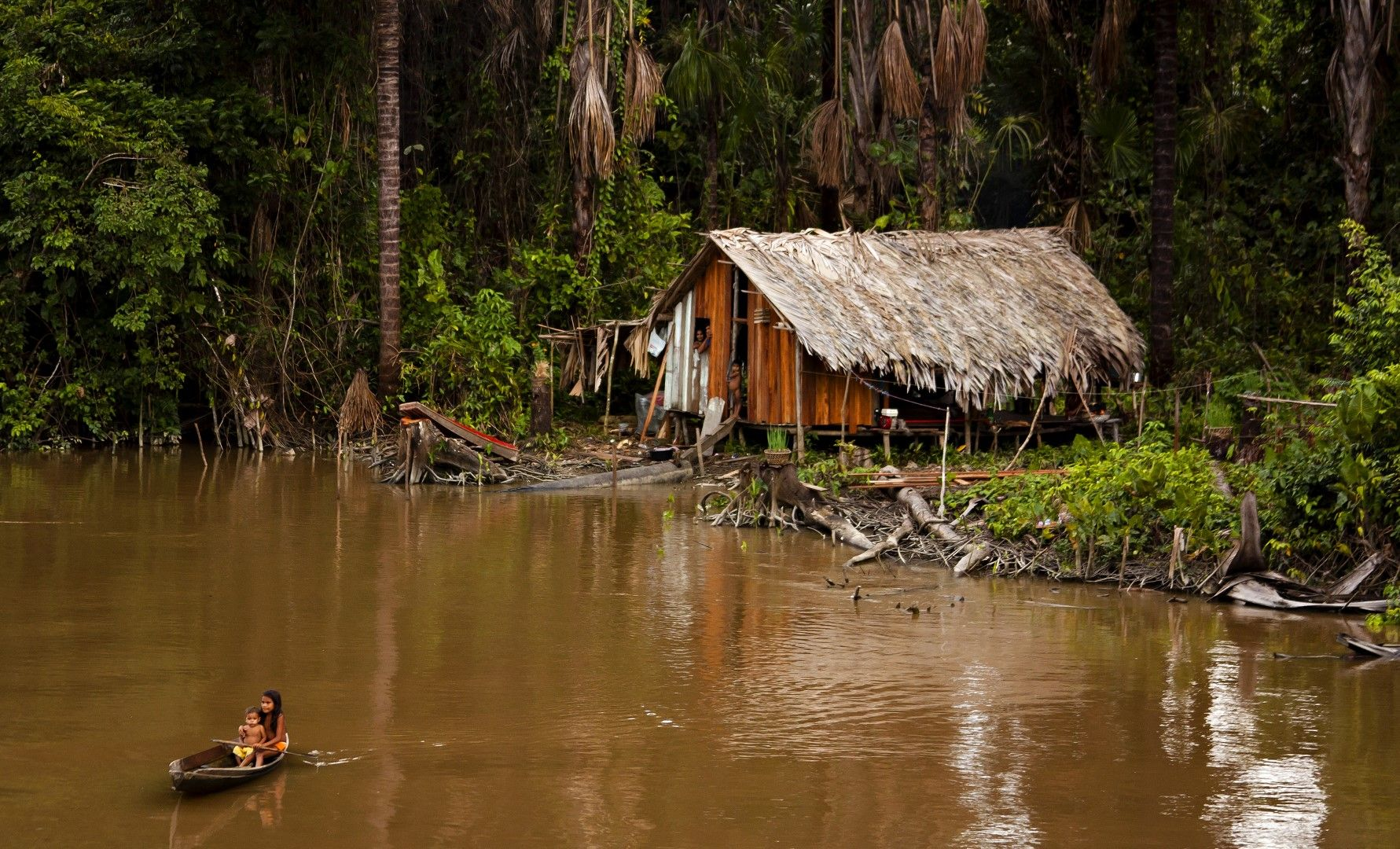 Колиба на местни хора на брега на Амазонка, Бразилия