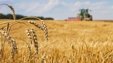 Експерт: Скандалите са там, където има пари, а в земеделието са много