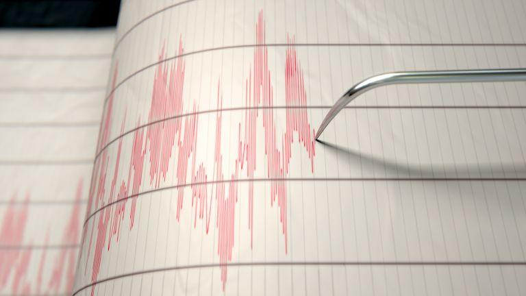 Виж още В 14:28 часа днес е регистрирано земетресение с