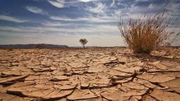 Светът има минимален шанс да избегне катастрофалните климатични промени