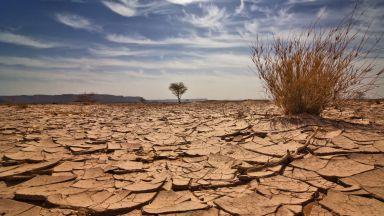 Ако се адаптираме към промяната на климата, защо да се опитваме да я предотвратим?