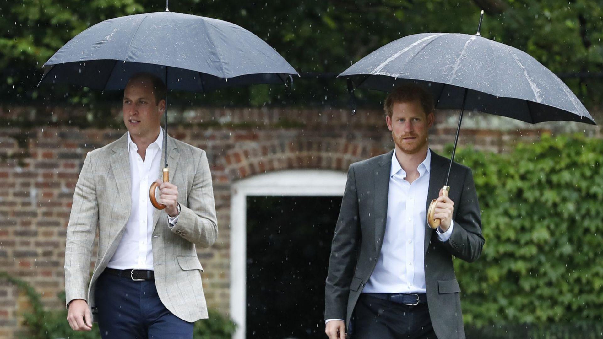 Ще успеят ли принцовете Хари и Уилям да преодолеят различията си