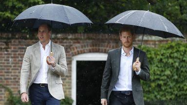 Принцовете Уилям и Хари за интервюто на лейди Даяна пред BBС: То отне живота ѝ