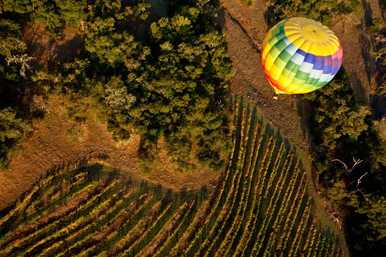 Полет с балон над лозята на долината Напа, САЩ