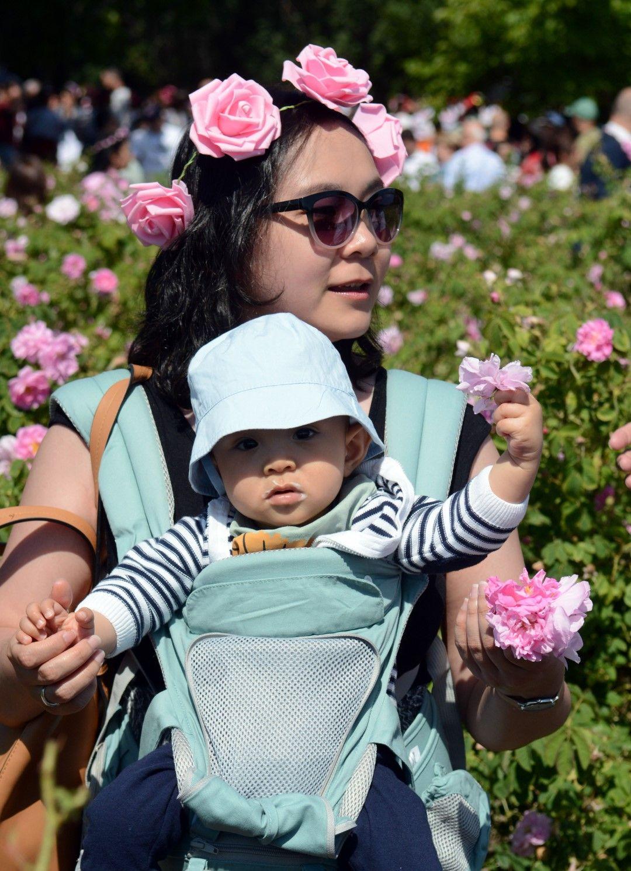 Казанлък (6 юни 2021) Автентичния ритуал розобер край Казанлък, събра гости и туристи от цял свят в розовите масиви край града. Събитието е част от 118-ия Празник на розата