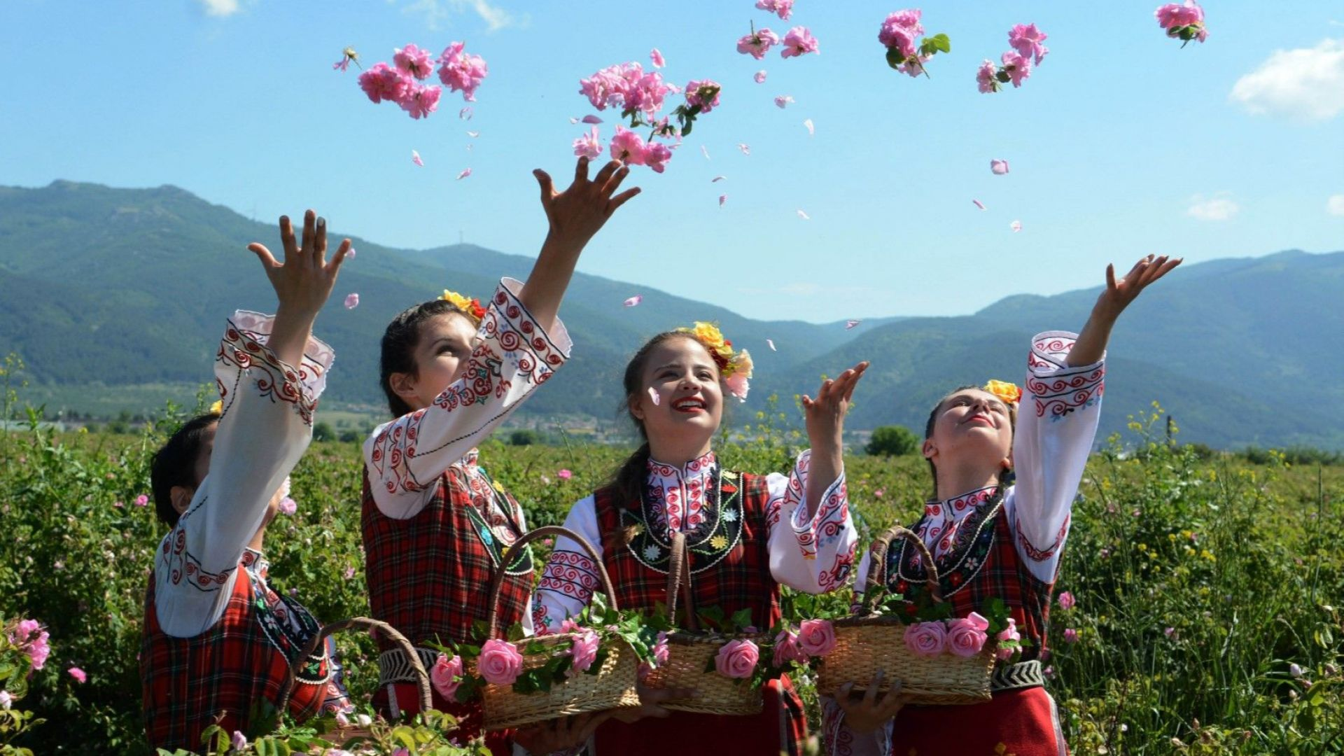 Пътят на розата от Долината до световния пазар: Увяхва ли националният ни символ?