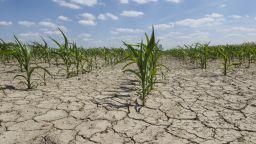 Учени обсъждат климатичните промени, причина  за аномалиите във времето