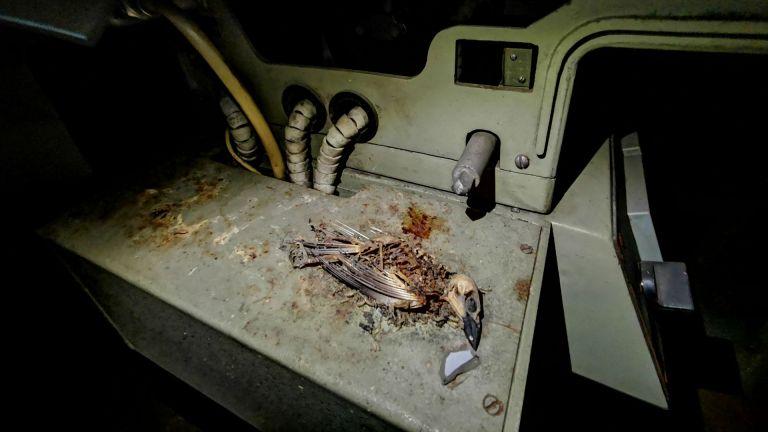 Температурата е мумифицирала последния посетител на прожекционната
