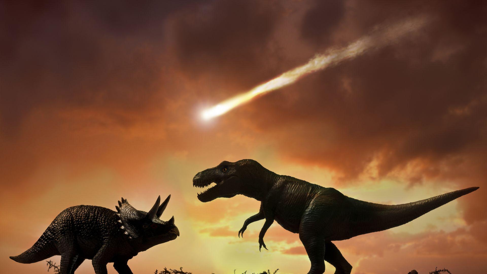 Динозаврите са станали жертва на застудяване