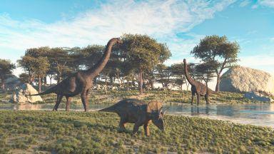 Динозаврите са живели  целогодишно в Аляска и са били топлокръвни