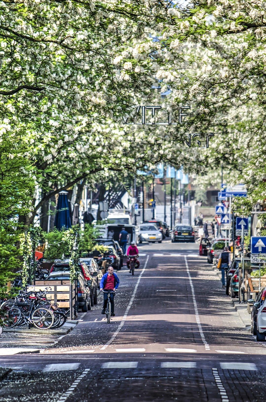 6. Witte de Withstraat, Ротердам, Нидерландия