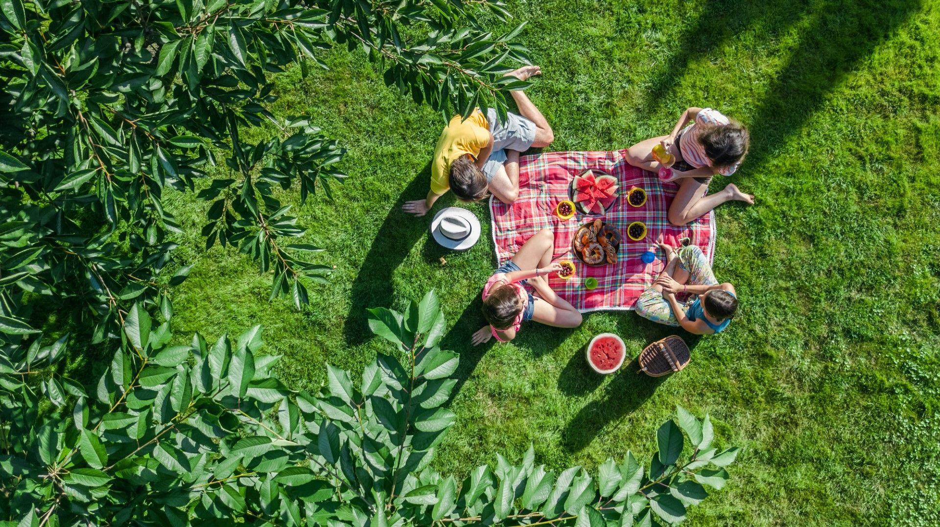 Пикник в градския парк