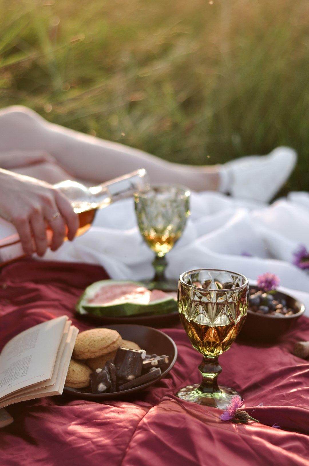 Пикник с книги и вино