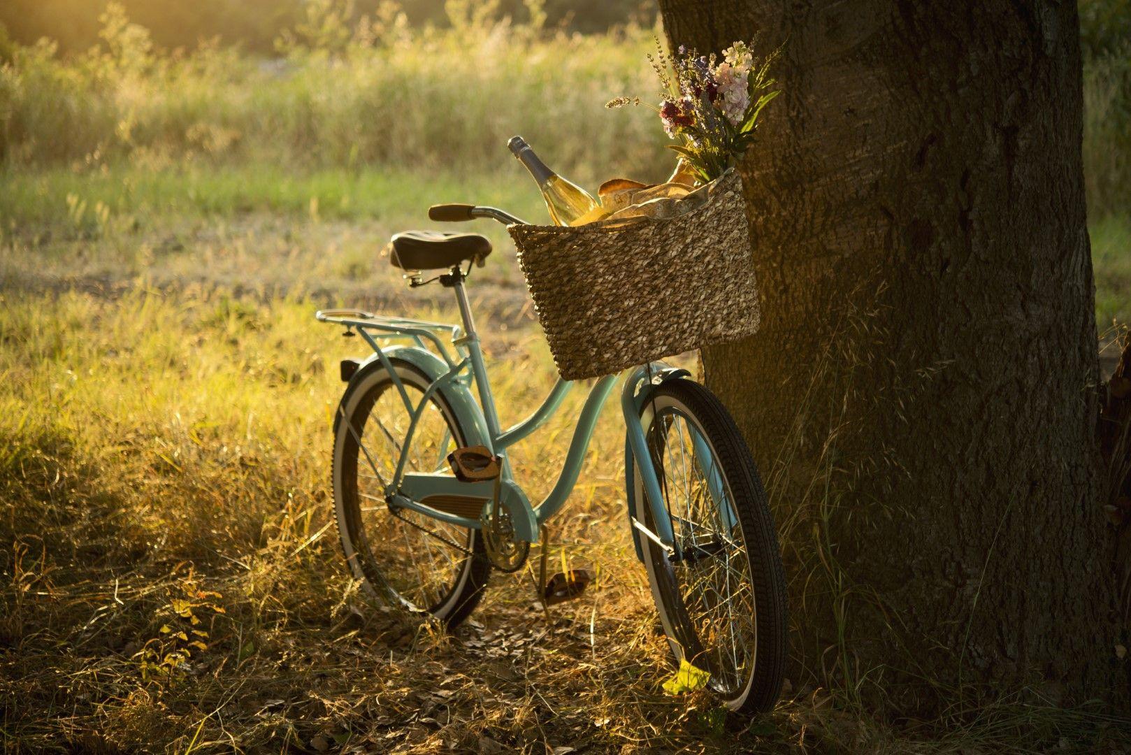 Пикник на колело