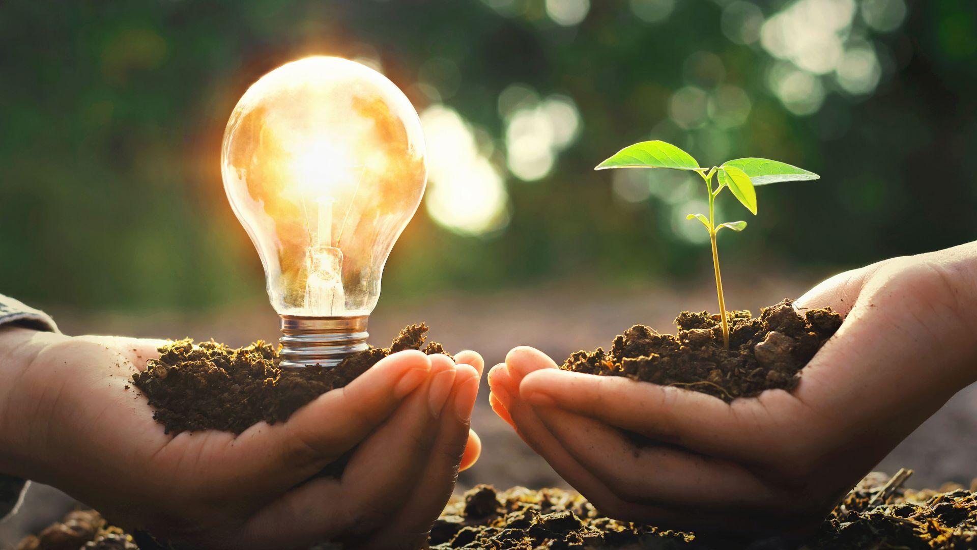 BASF приема заявления за Финансиране на стартъпи и иноваторски решения в България