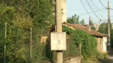 Неизвестен стреля по домашни котки в Горна Оряховица