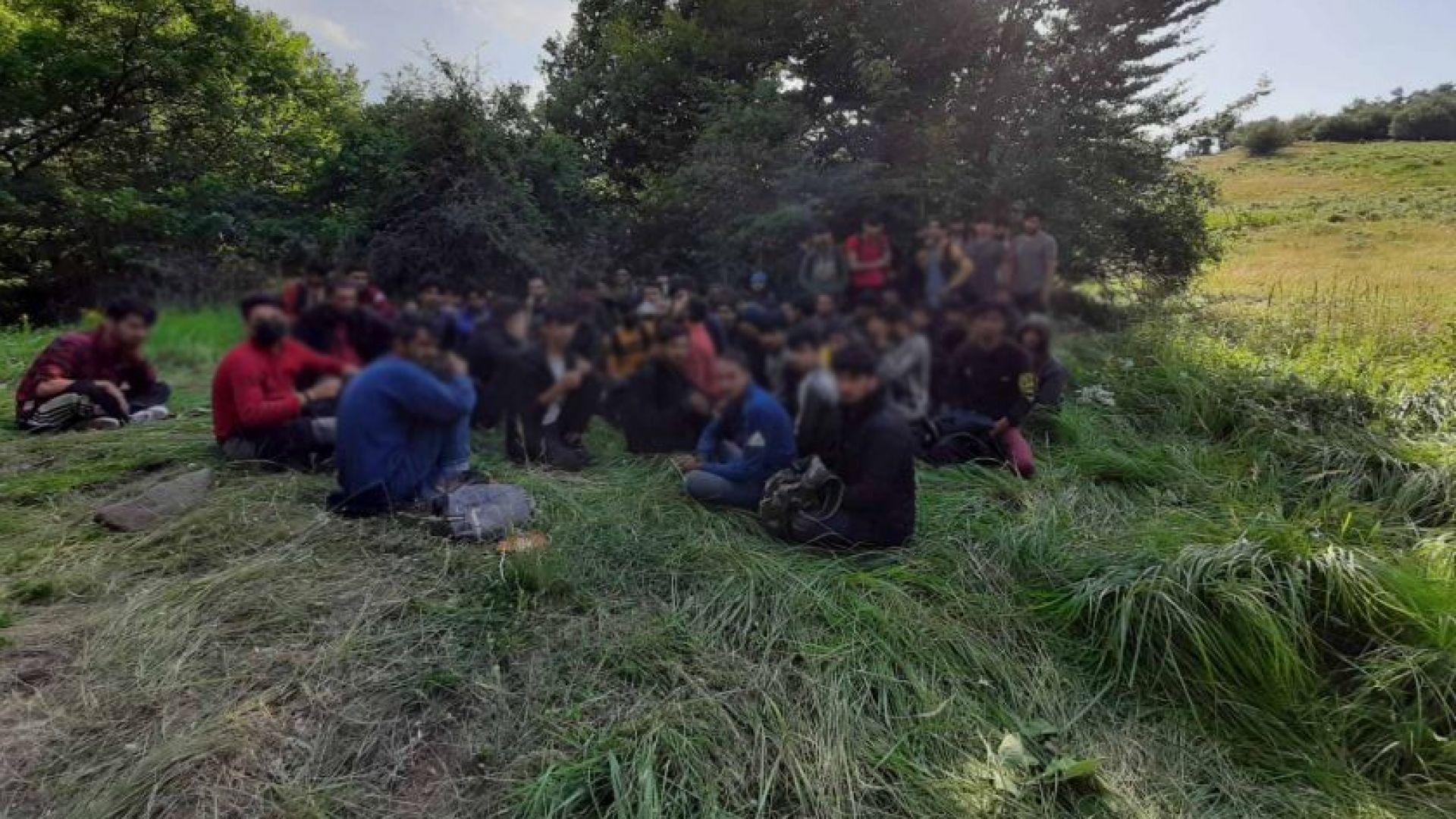 Служител на ловно стопанство откри десетки мигранти край Ихтиман